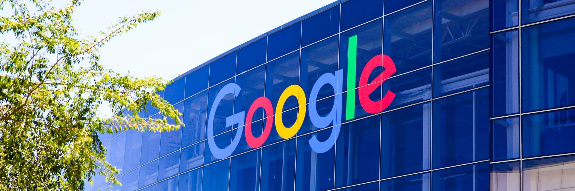 google_search_banner